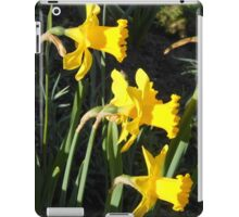 Chorus of Daffodils (Lent Lilies) iPad Case/Skin