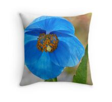 himalayan blue Throw Pillow