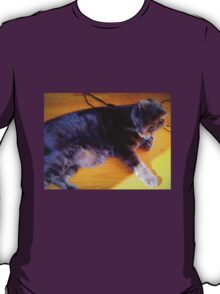 Cat-ching A Few Rays T-Shirt