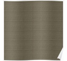 Desert Taupe Wood Grain Texture Color Accent Poster