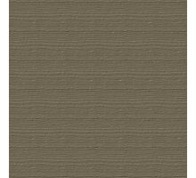 Desert Taupe Wood Grain Texture Color Accent Photographic Print