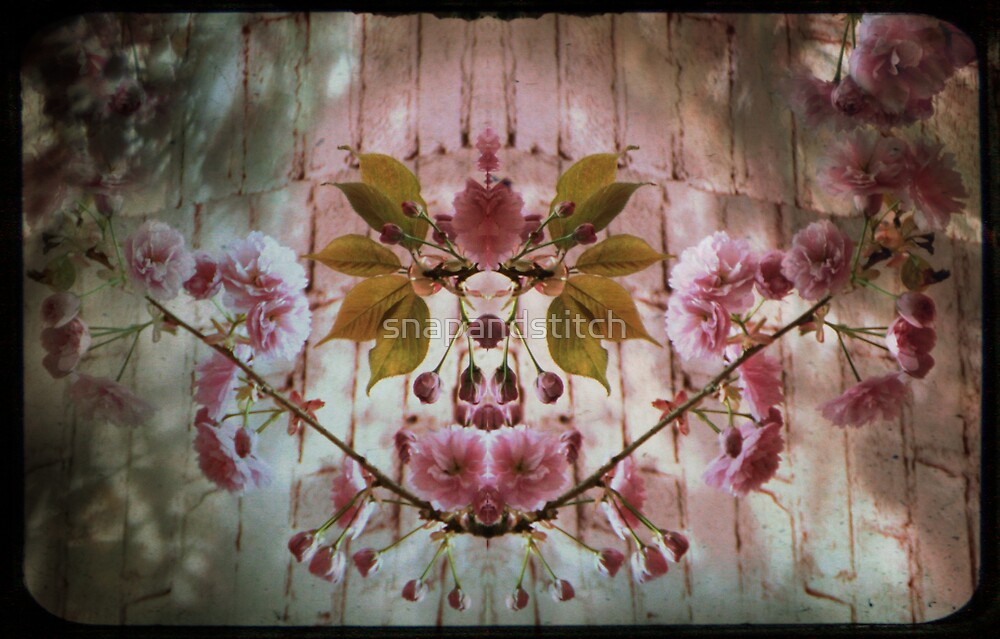 Flower  Flow by snapandstitch