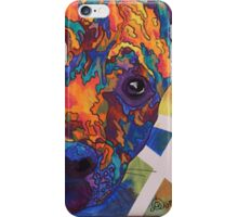 Spectra Flop by Asra Rae iPhone Case/Skin