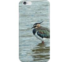 Northern Lapwing iPhone Case/Skin