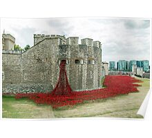 Poppies at The Tower Poster