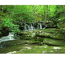 ~Kings River Natural Area~ Photographic Print
