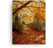 Autumn Pathway 2 Canvas Print