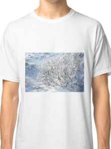 Hoarfrost on Arctic Willow Classic T-Shirt
