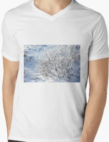 Hoarfrost on Arctic Willow Mens V-Neck T-Shirt