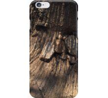 ≈ iPhone Case/Skin