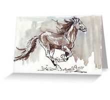 A handful of Southerly wind ... Wild horses in South Africa Greeting Card