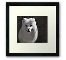Pure as Snow Framed Print