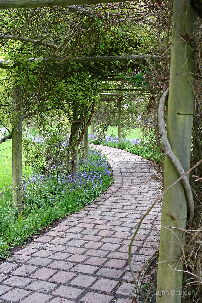 """Arbored Pathway"" by Lynn Bawden"