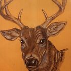 Oh Deer! (A personal story) by Maree  Clarkson