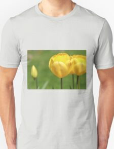 Yellow Tulips T-Shirt