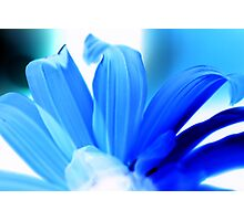 Blue Hues Photographic Print