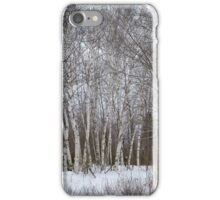 Winter Garden iPhone Case/Skin