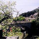 King's Bridge by Arkani