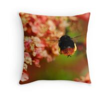 Red Tailed Bumble Bee Throw Pillow