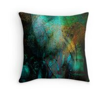 Patagonia dreamin.. face to face Throw Pillow