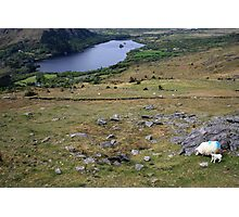 Healy Pass view Photographic Print