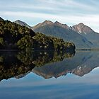 Gunn Lake - Milford Sound, New Zealand by Wendy  Meder