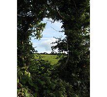 Rural Irish field Photographic Print