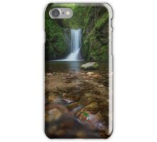 Geroldsau Cascade iPhone Case/Skin
