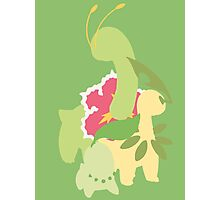 Chikorita Evolution Photographic Print
