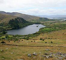 Healy Pass scene by John Quinn