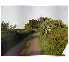 Rural Irish road Poster