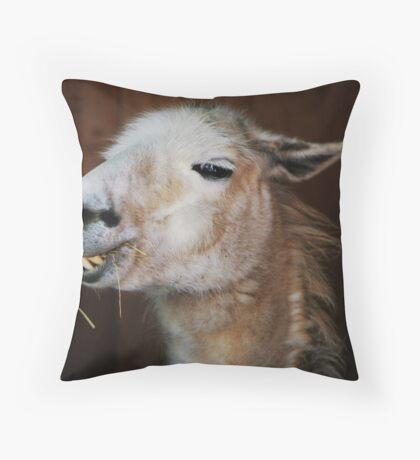 Dalai Throw Pillow