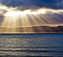 Wellington Rays by TrinityShot