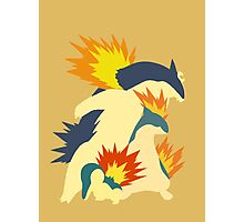 Cyndaquil Evolution Photographic Print