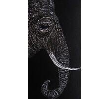 Elephant Drawing with Pastel Pencil Photographic Print
