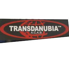 transdanubia acab 1312 by Peany