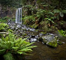 Hopetoun Falls by Alistair Wilson