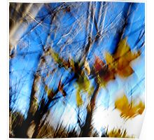 Remnants of Autumn Poster