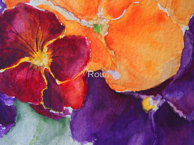 pansies 2 by Rowi