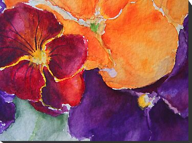 pansies 2 by Rowi