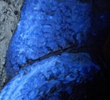 Blue Torso Sticker
