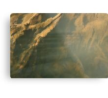 Beneath the surface V Metal Print