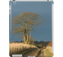 Afternoon Sunlight and Cloud iPad Case/Skin