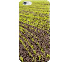 Young Crop iPhone Case/Skin