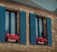 Twin Windows by Elaine Teague