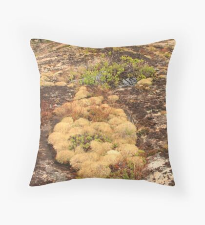 Pink rocky plateau Throw Pillow