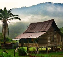 Malay Kampong by Steven  Siow