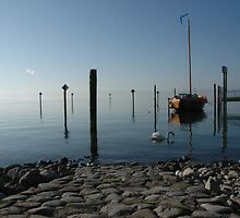lake of constance early morning by Manfred Bruttel