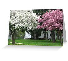 Blooming Trees In The Neighborhood Greeting Card