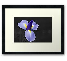 Mother's Day Gift Framed Print
